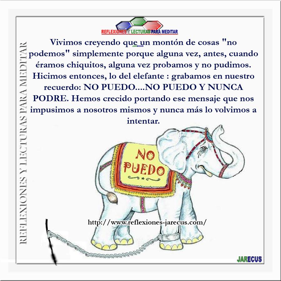 El elefante encadenado v deo reflexi n reflexiones y for El elefante encadenado