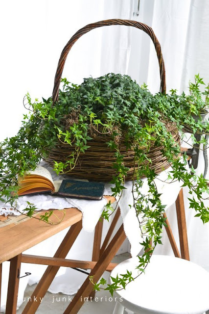 ivy in basket via Funky Junk Interiors