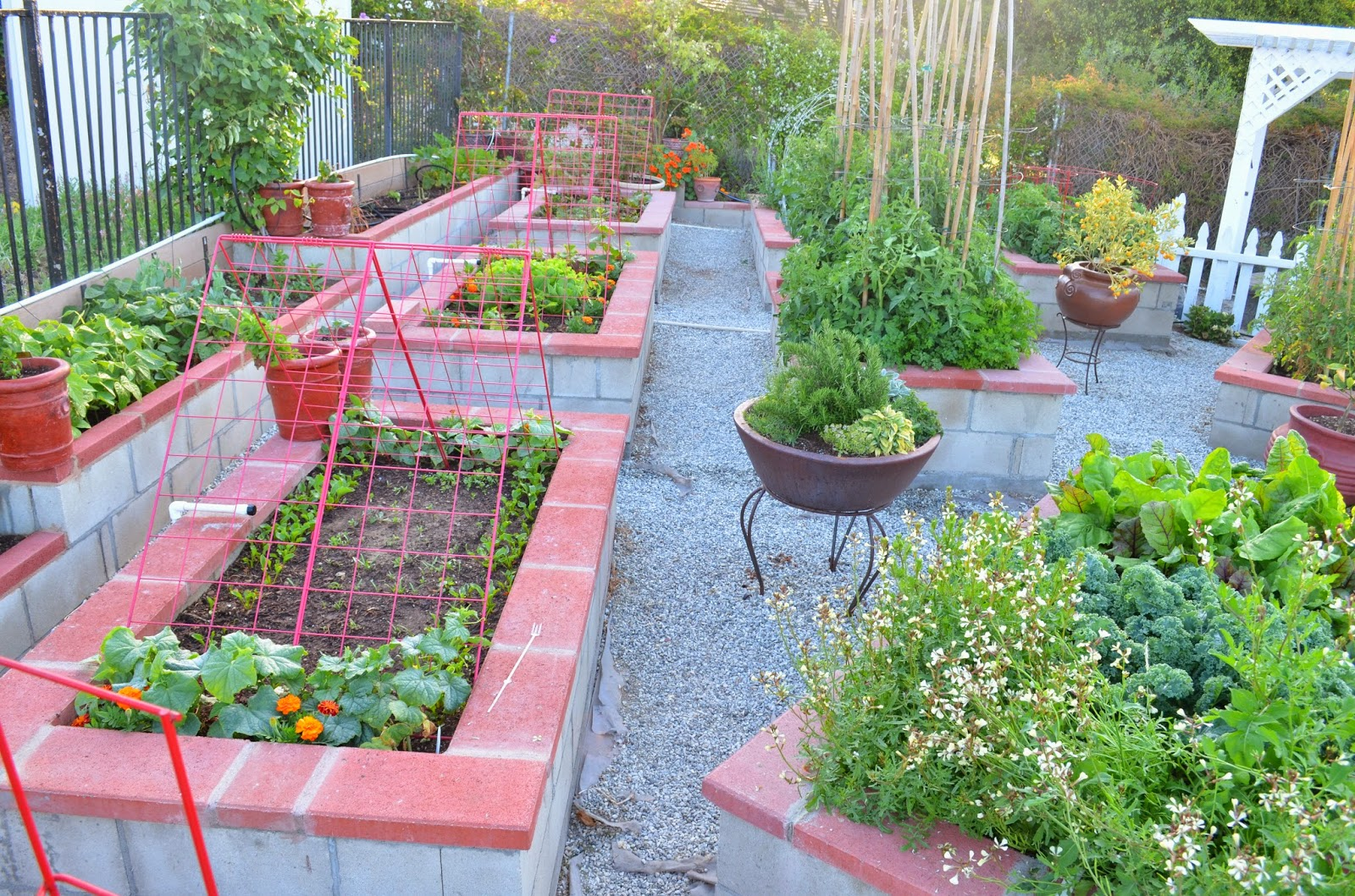 Kitchen Gardens In India Entertaining From An Ethnic Indian Kitchen Garden Tour 2 The