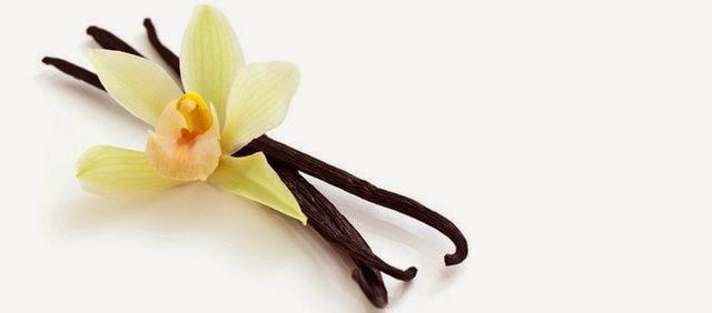 Vanilla - Negruca Vanilia