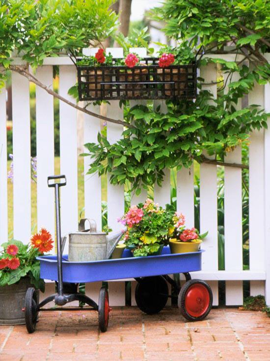 Crear un ambiente acogedor en el patio y la terraza guia - Plantas para vallas ...