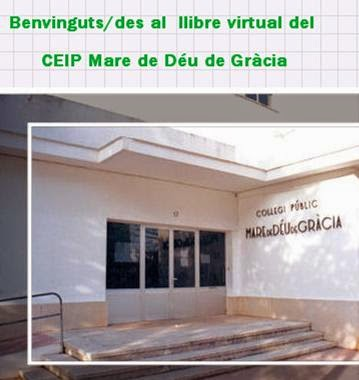 Llibre virtual