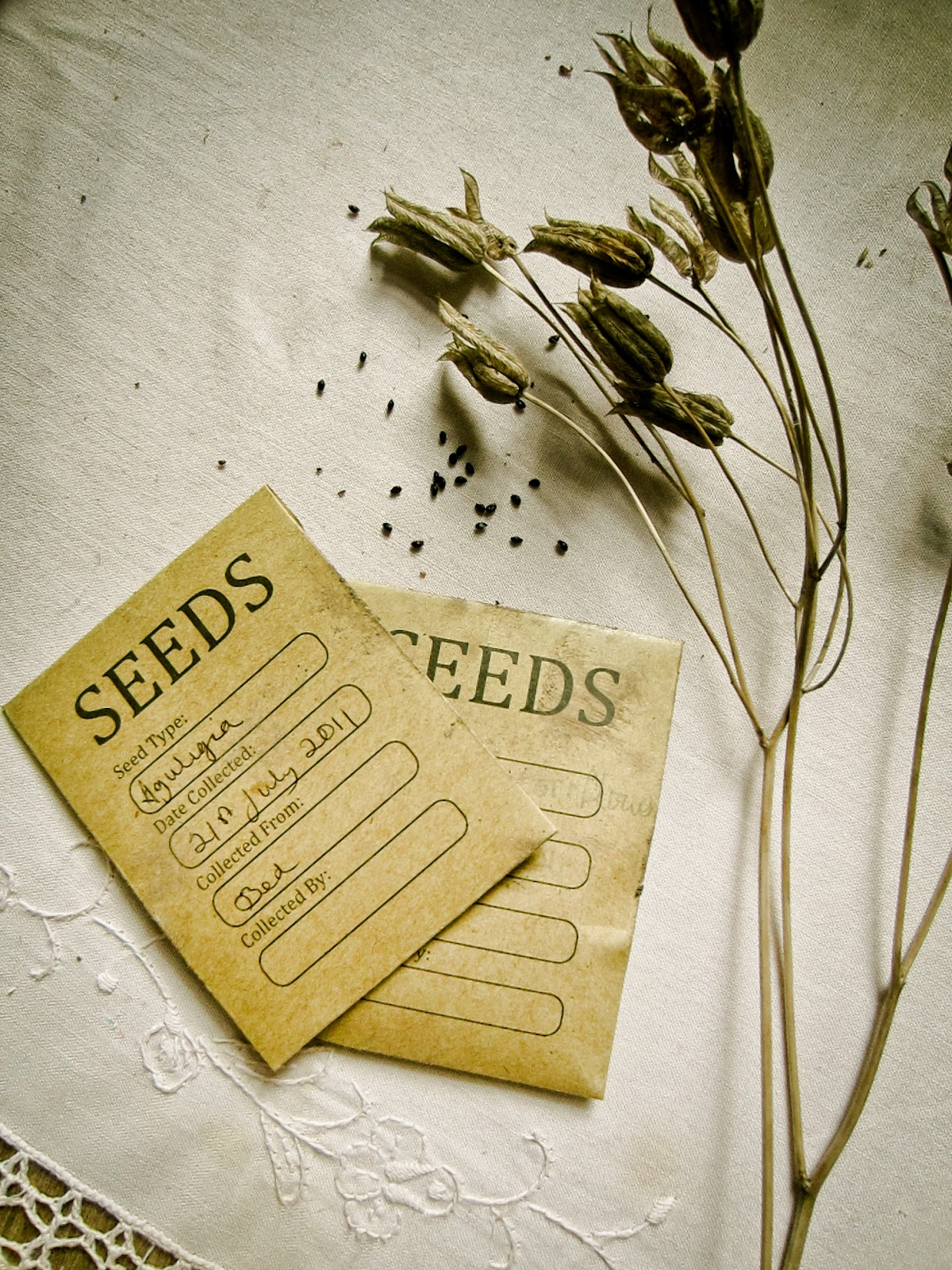 Burgon and ball seed storage packets