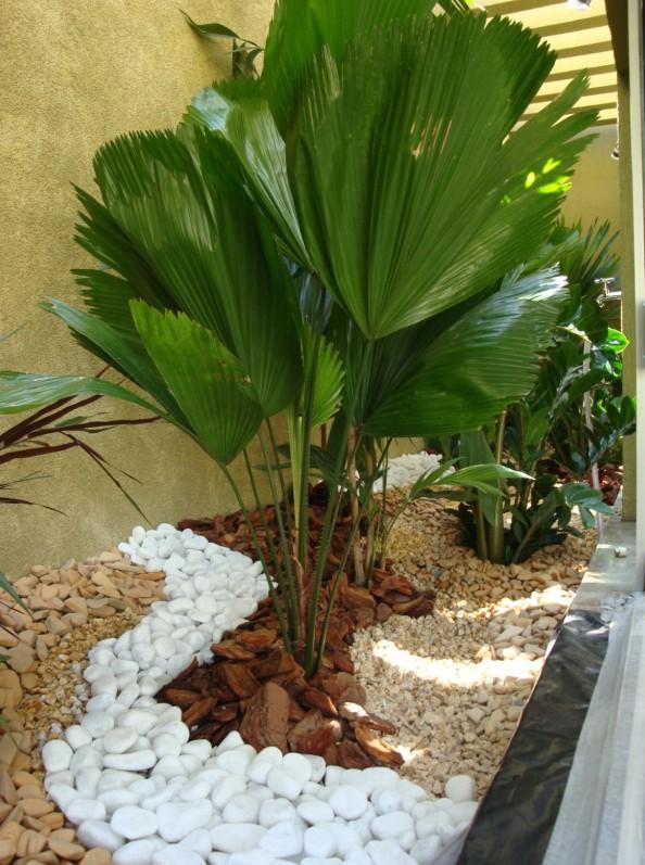 jardim ideias simples : jardim ideias simples:Meu Palácio de 64m²: Jardim de Inverno