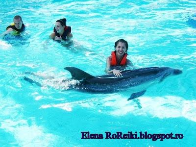 Initiere Dolphin Reiki la distanta