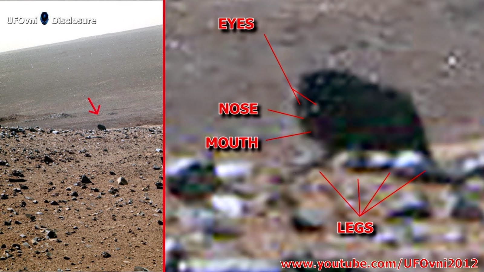 Possible créature sombre à quatre pattes pris à la caméra par Opportunity Mars Rover