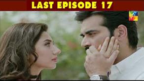 Bin Roye Last Episode
