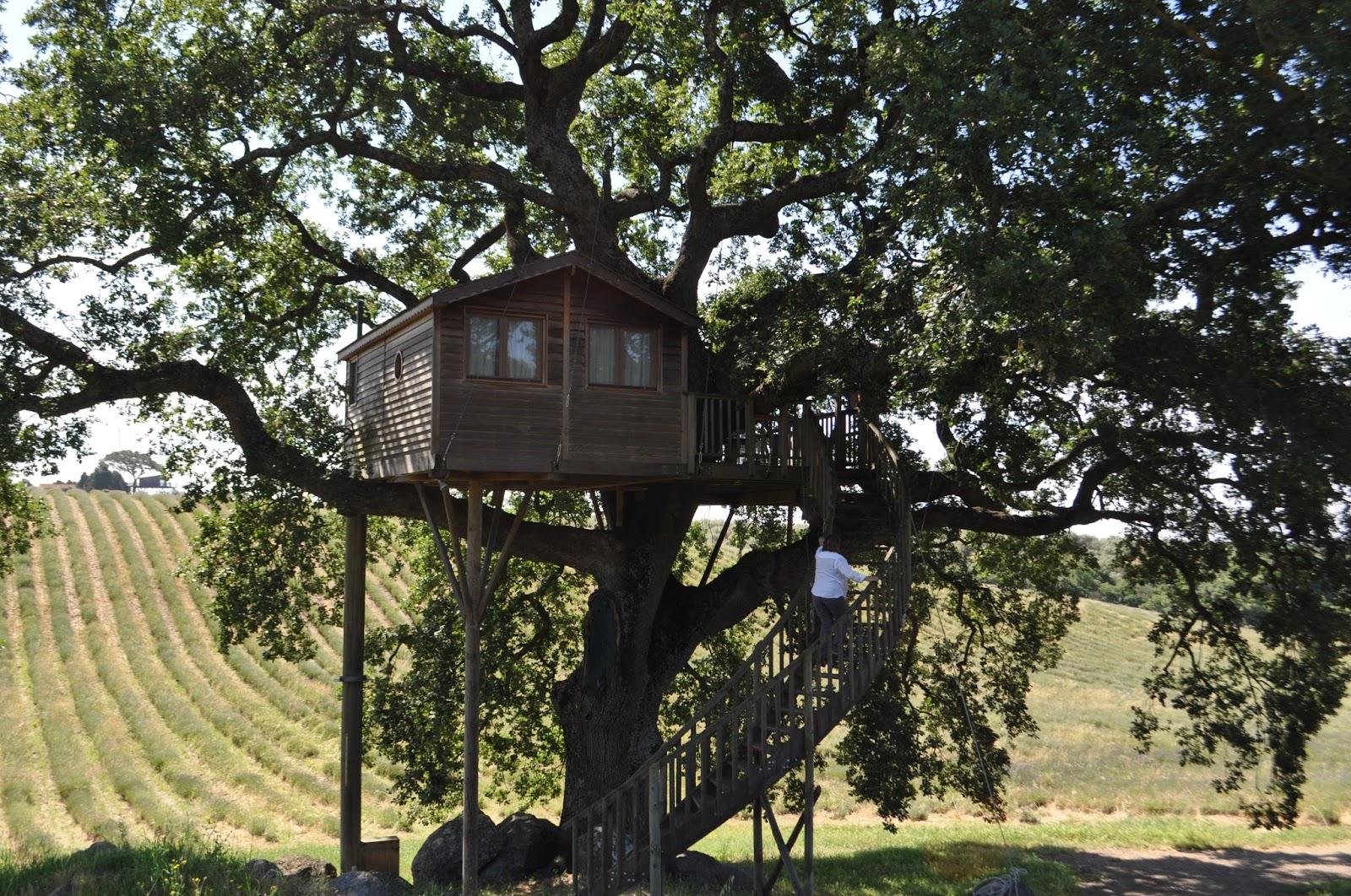 Knittiamo con martina e roberta la casa sull 39 albero un - Casa sull albero da costruire ...