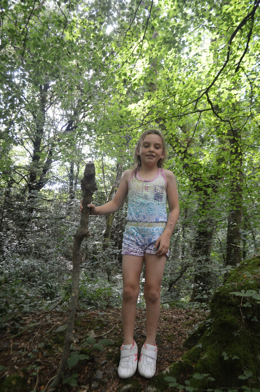 Withybush Woods Pembrokeshire Family Fun Country Kids Wales