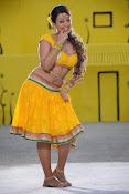 Ester Noronha Photos from Bheemvaram Bullodu-thumbnail-1