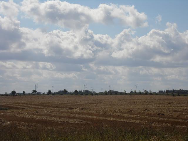 Krajobraz z widoczną elektrownią wiatrową - pomiędzy Sarbinowem Morskim a Gąskami w Gminie Mielno