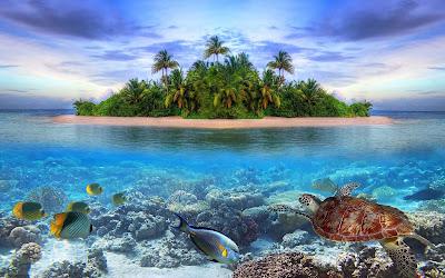 Baixe grátis papel de parede da natureza paisagem tropical em hd 1080p. Download tropical scene nature Desktop wallpaper, background images, pictures in HD and Widescreen high quality resolutions for free.