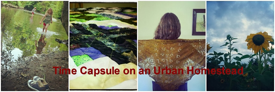 Time Capsule on an Urban Homestead