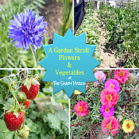 A Garden Stroll: Flowers & Vegetables