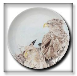 Zeearenden op nest Link naar mijn website