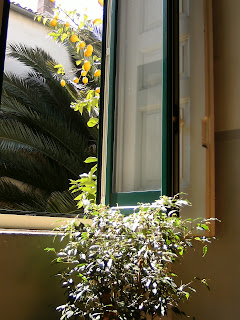finestra delle scale di entrata