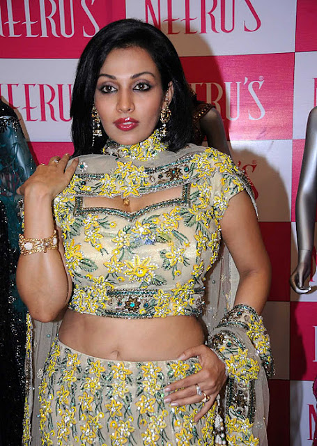 Asha Saini Spicy Photos