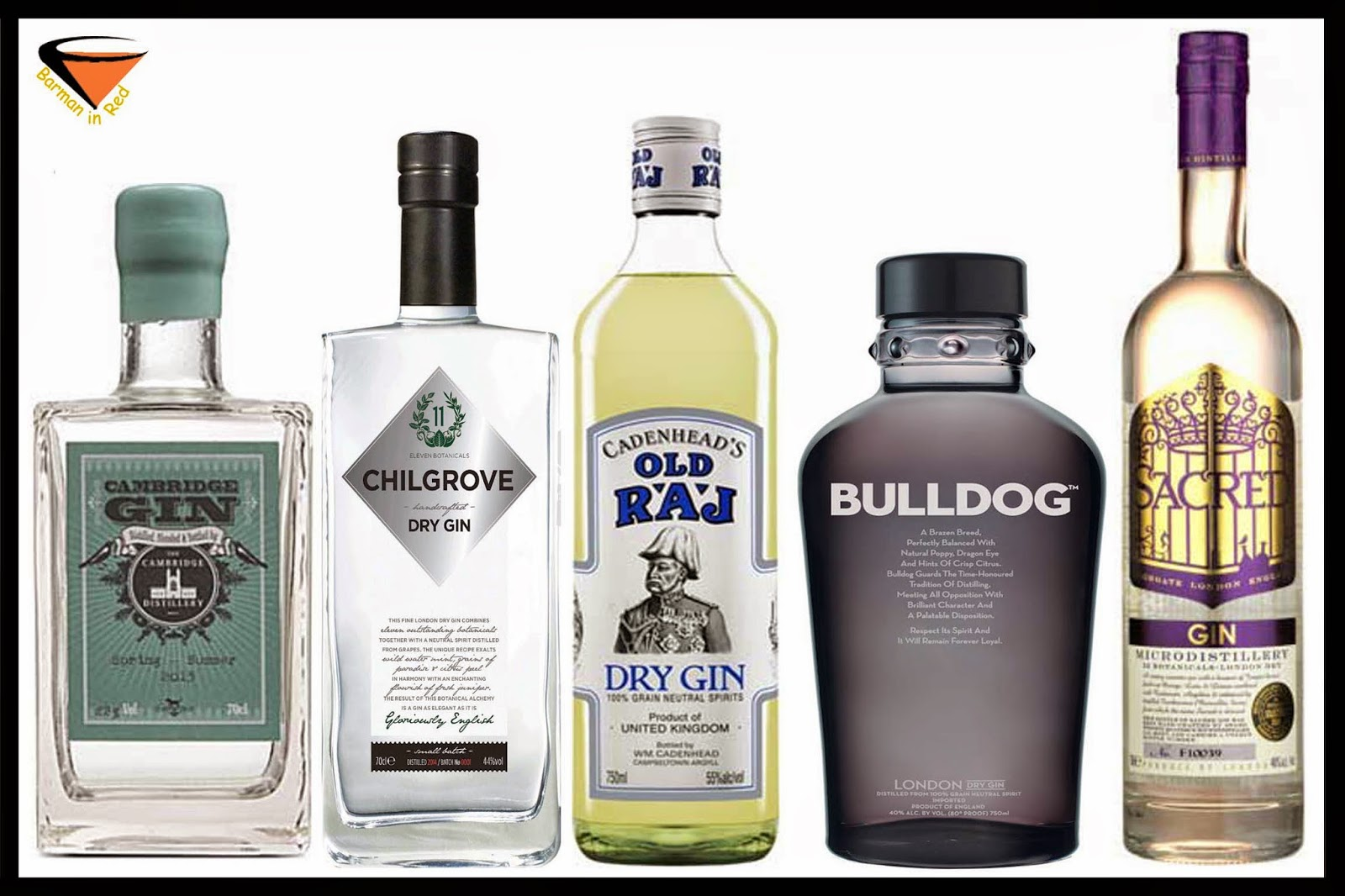 10 mejores ginebras