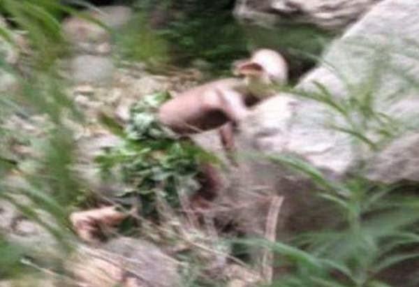 Chinese Tourist Take Alien Photo in Beijing Gollum Like Monster
