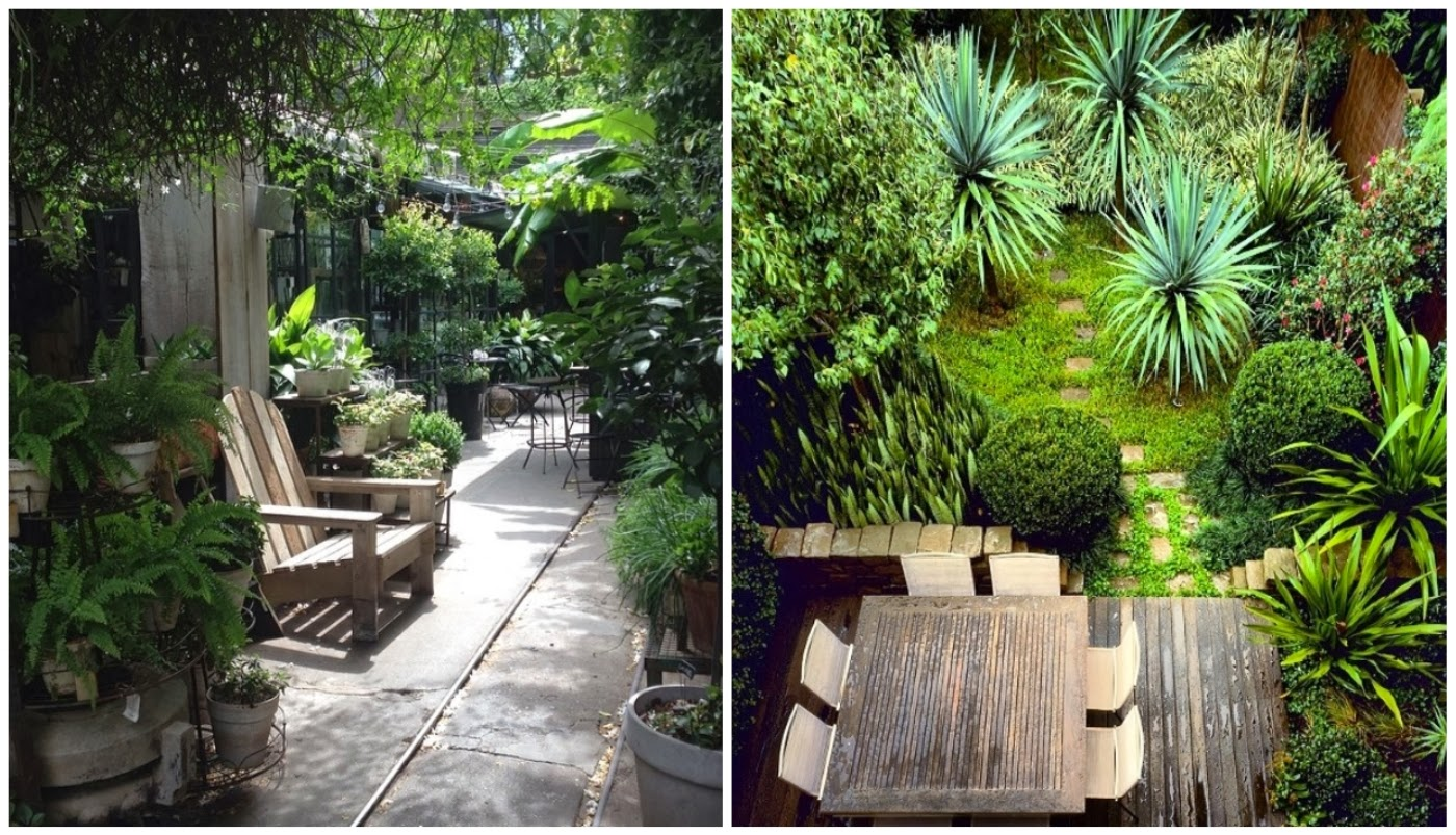 plantas no entorno da casa @sinpecadoconcebida e paisagismo @casadevalentina