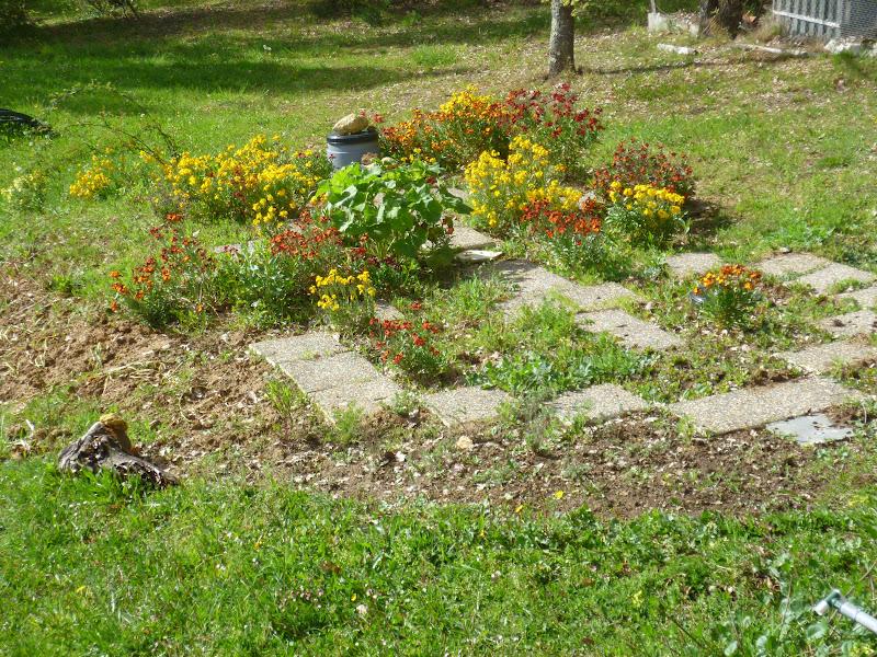 Ellis pied sec plage de tuin in en na de regen for Beneden tuin