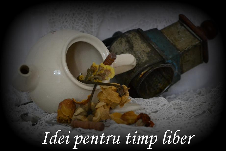 idei pentru timp liber