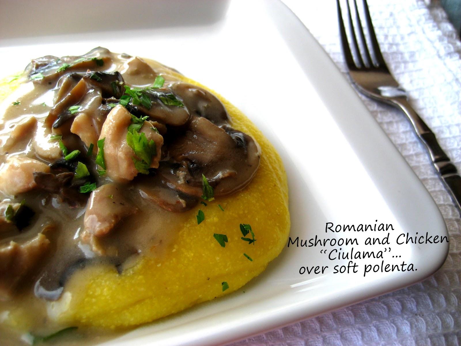 Home cooking in montana romanian cream of mushroom with chicken romanian cream of mushroom with chicken or ciulama de ciuperci cu carne de pui forumfinder Images