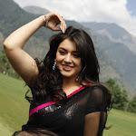 Hansika Motwani in Black Saree  Cute Photos