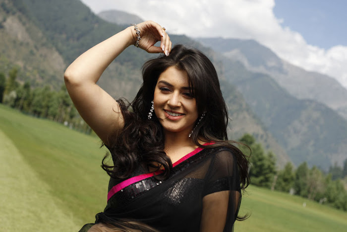 hansika new saree , hansika