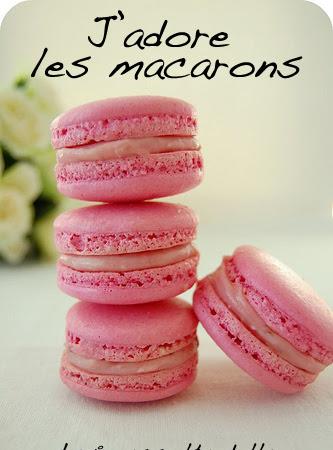 La mia prima raccolta - J'adore les macarons