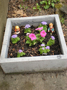 Cement Block as a Planter
