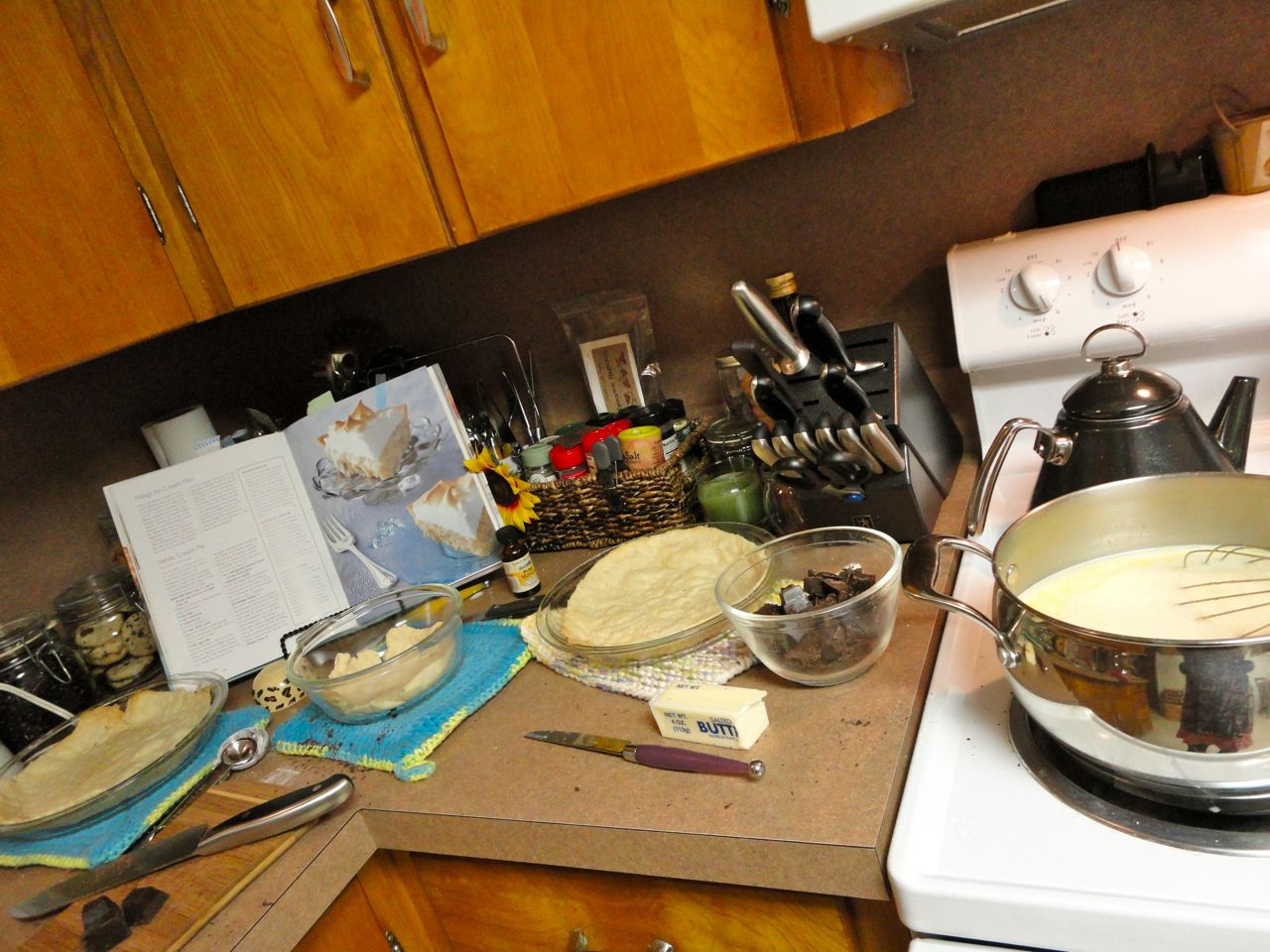 Typing Sunflowers: Kitchen Disasters