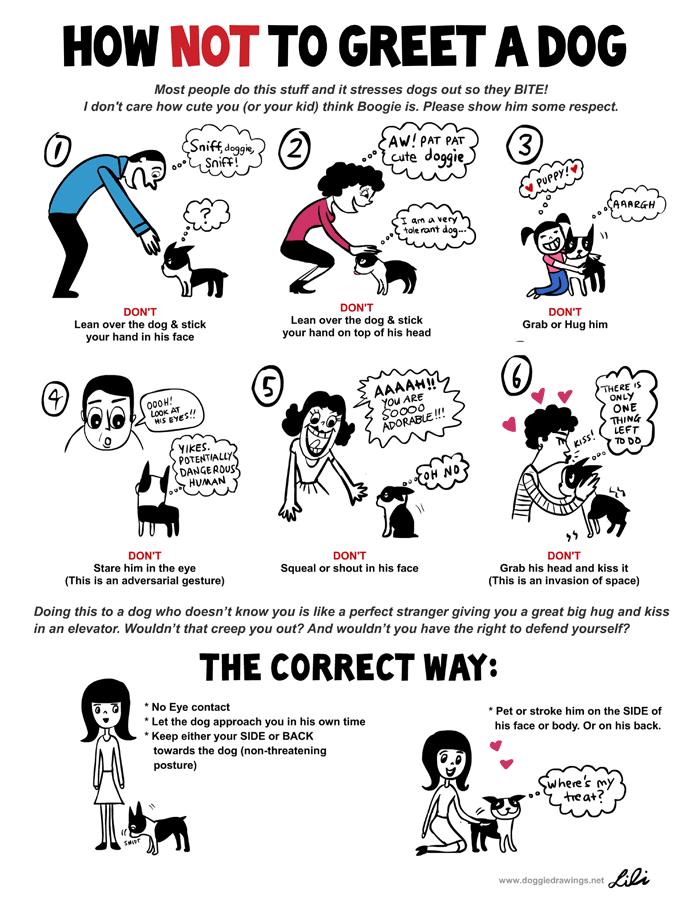 petpourri national dog bite prevention week