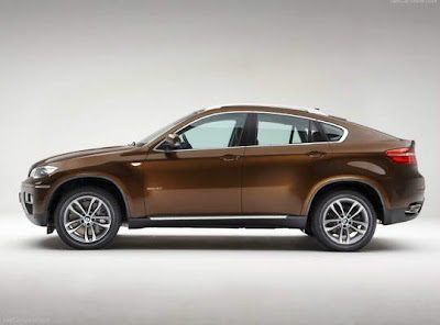 2013_bmw_x6_Brown_Color