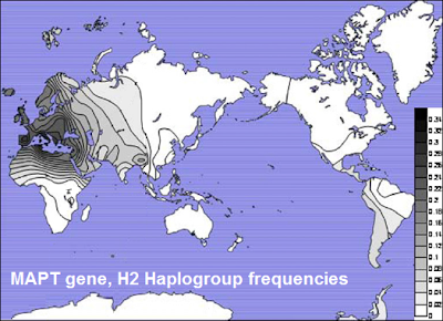 H2 haplogroup map MAPT Gene