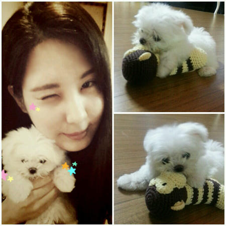Seohyun Introducing a Dubu! 130703%252Bseohyun%252Bwith%252Bher%252Bpuppy%252Btofu