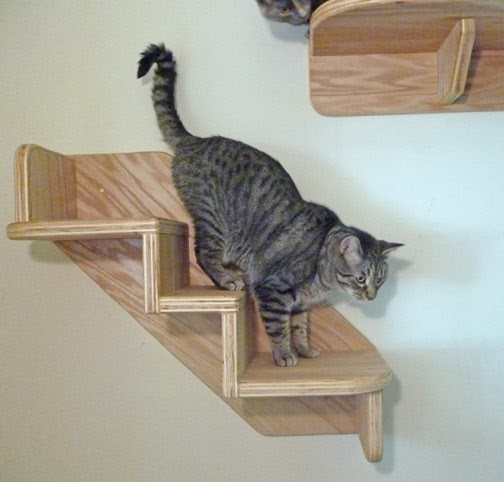 Cat christmas gift ideas
