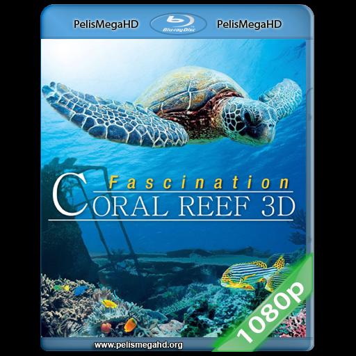 CORAL REEF MISTERIOS DEL MUNDO SUBMARINO 3D (2012) FULL 1080P HD MKV ESPAÑOL LATINO