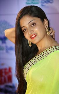 Actress Poonam Kaur Pictures in Saree at Memu Saitam Dinner with Stars Red Carpet  48.jpg