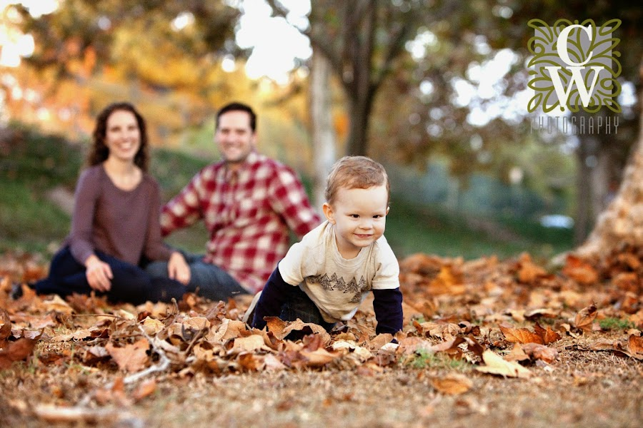 fall family portraits long beach