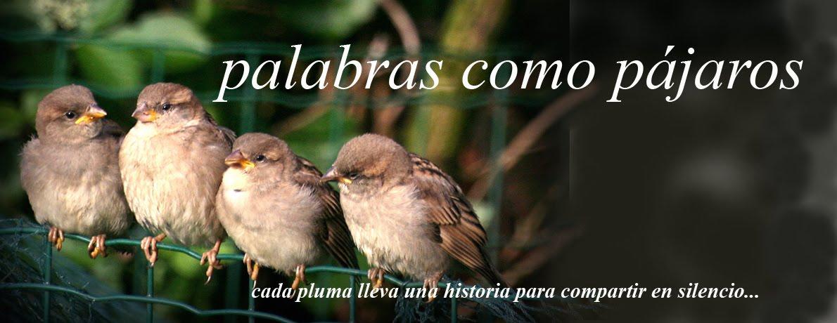 palabras como pájaros