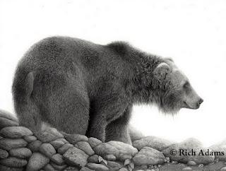 Dibujos Animales Salvajes Lapiz