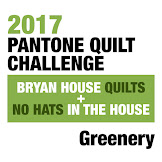 Pantone Quilt Challenge 2017