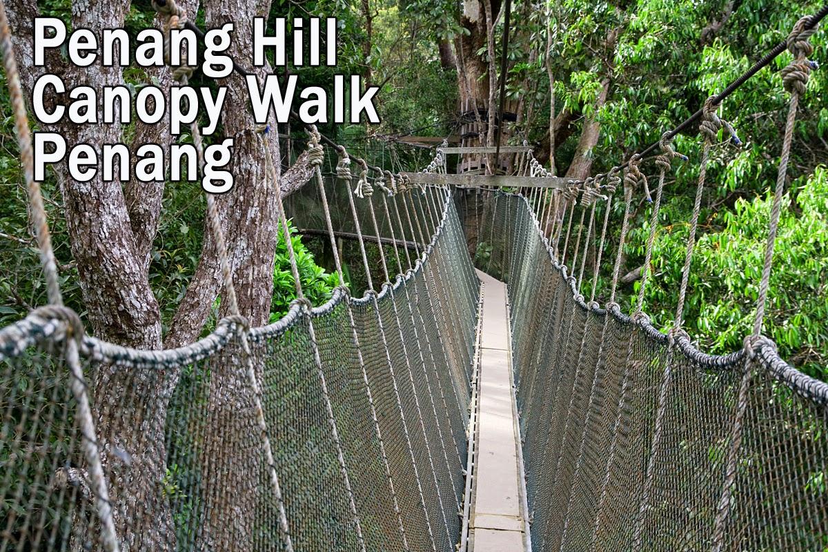 Penang Hill Tree Top Walk