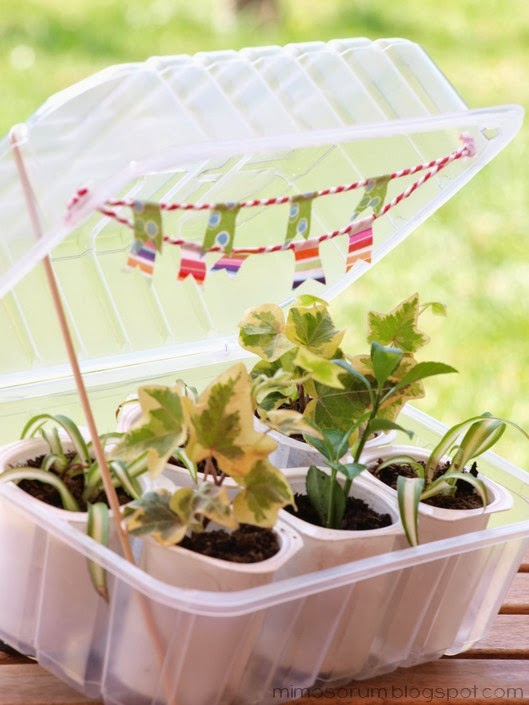 Mimosorum c mo hacer un invernadero casero diy make a - Como hacer un invernadero pequeno ...
