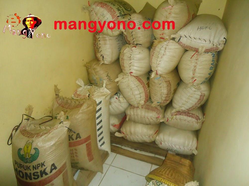 Cara menyimpan Gabah / padi dengan cara  tradisional dan modern