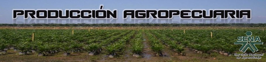 Produccion Agropecuaria Mas Limpia