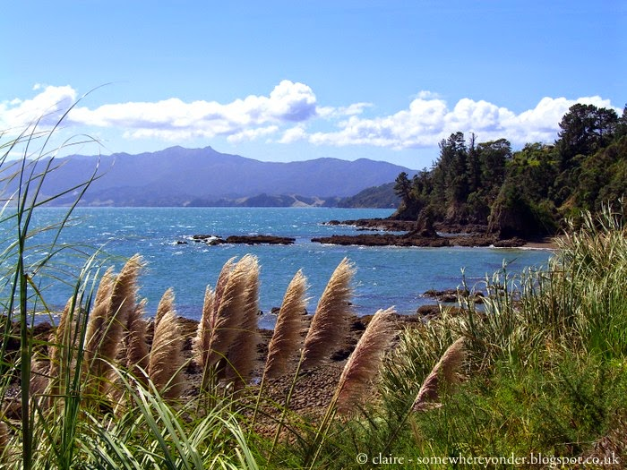 sea view from Amodeo Bay, New Zealand
