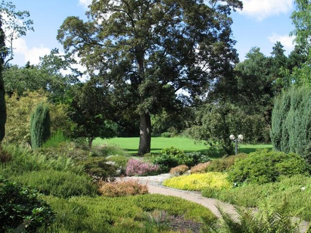 Ogród botaniczny we Frankfurcie - Palmengarten Frankfurt