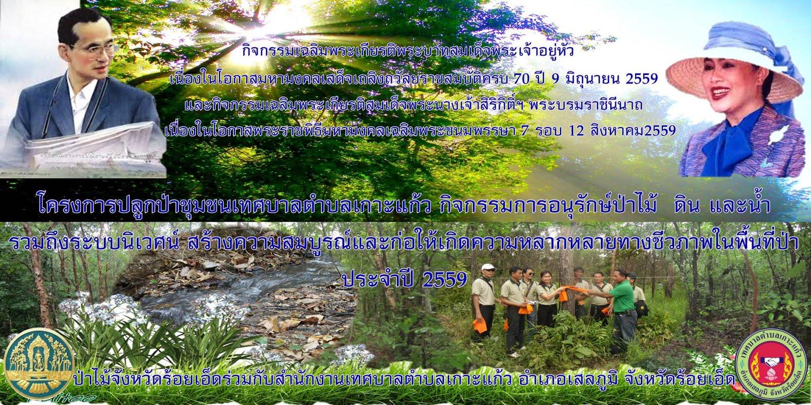 โครงการปลูกป่าชุมชนเฉลิมพระเกียรติฯ